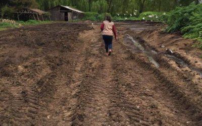 Vecinos de El Nogal denunciaron vertido de riles porcinos en camino vecinal