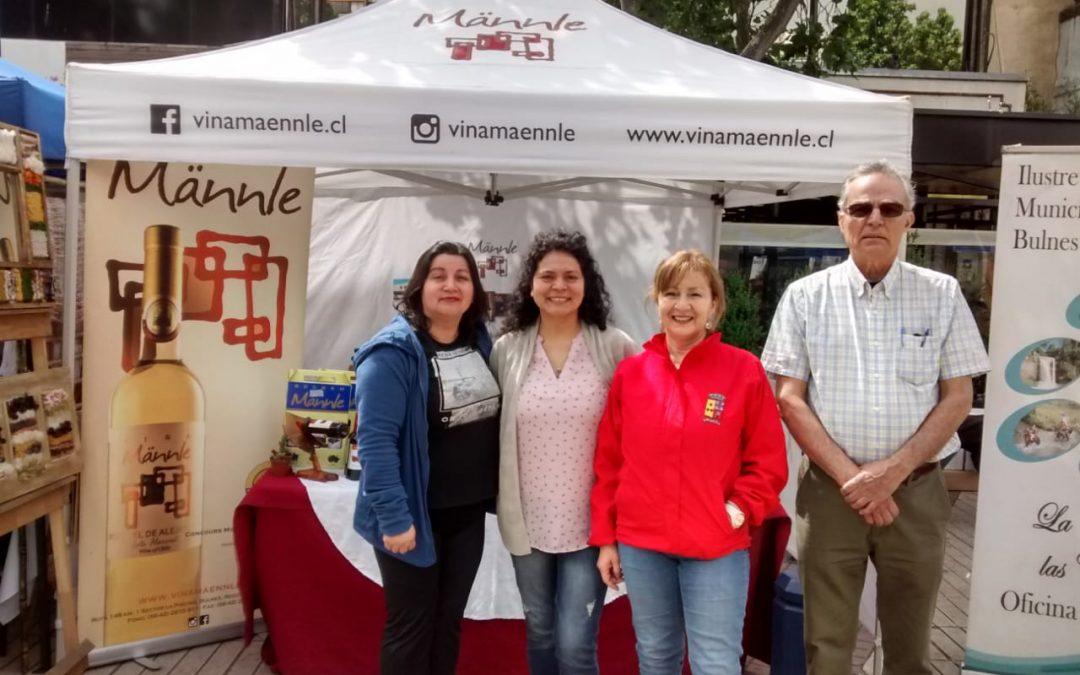 Resaltan bondades de Bulnes en Feria Regional realizada en Chillán