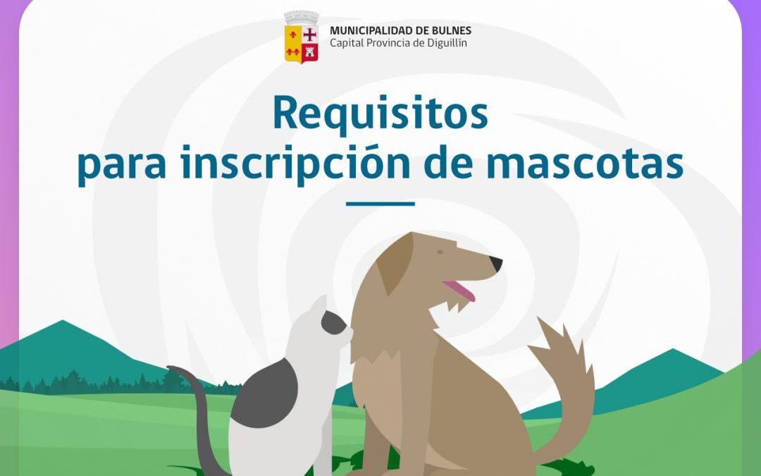 Requisitos para inscripción de sus mascotas