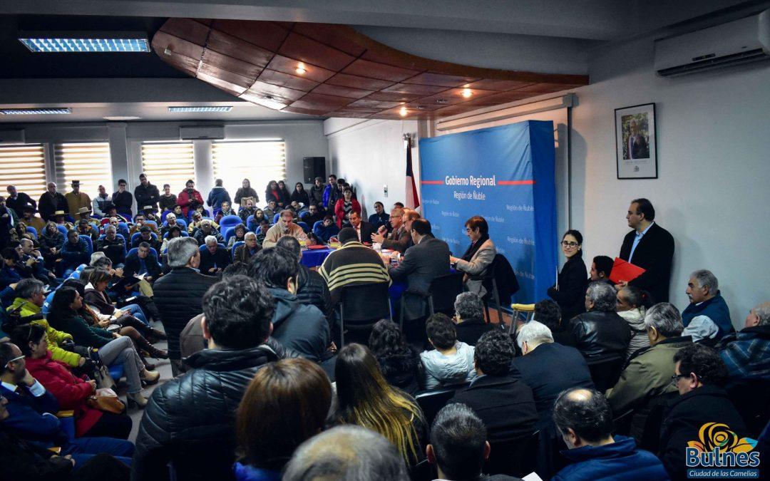 Gobierno Regional aprobó seis proyectos de la Cultura para Bulnes