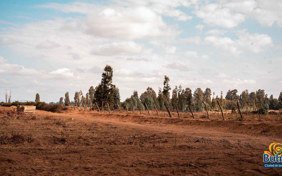 Grandes avances registra canal que regará 270 hectáreas de agricultores de Bulnes