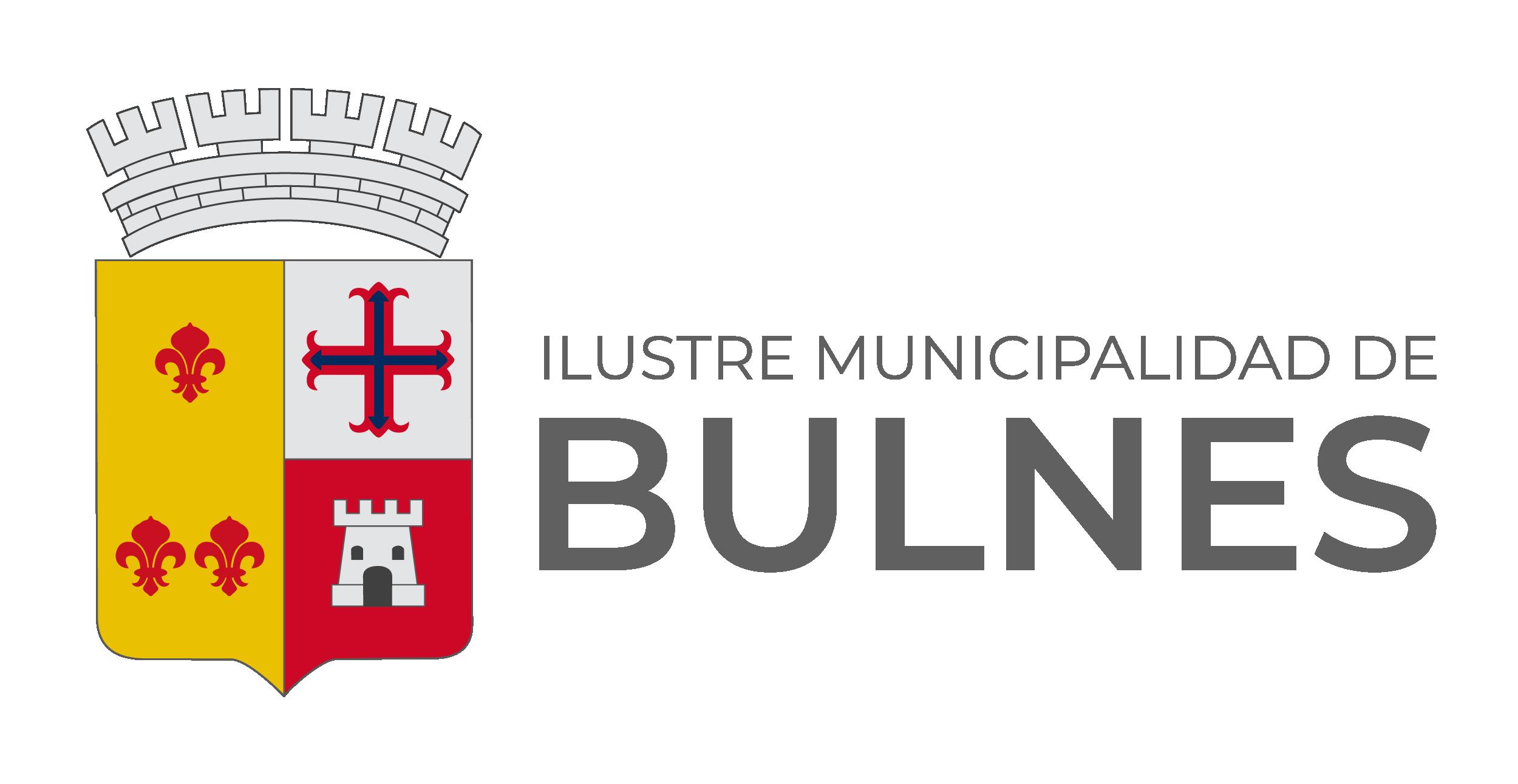 Municipalidad de Bulnes